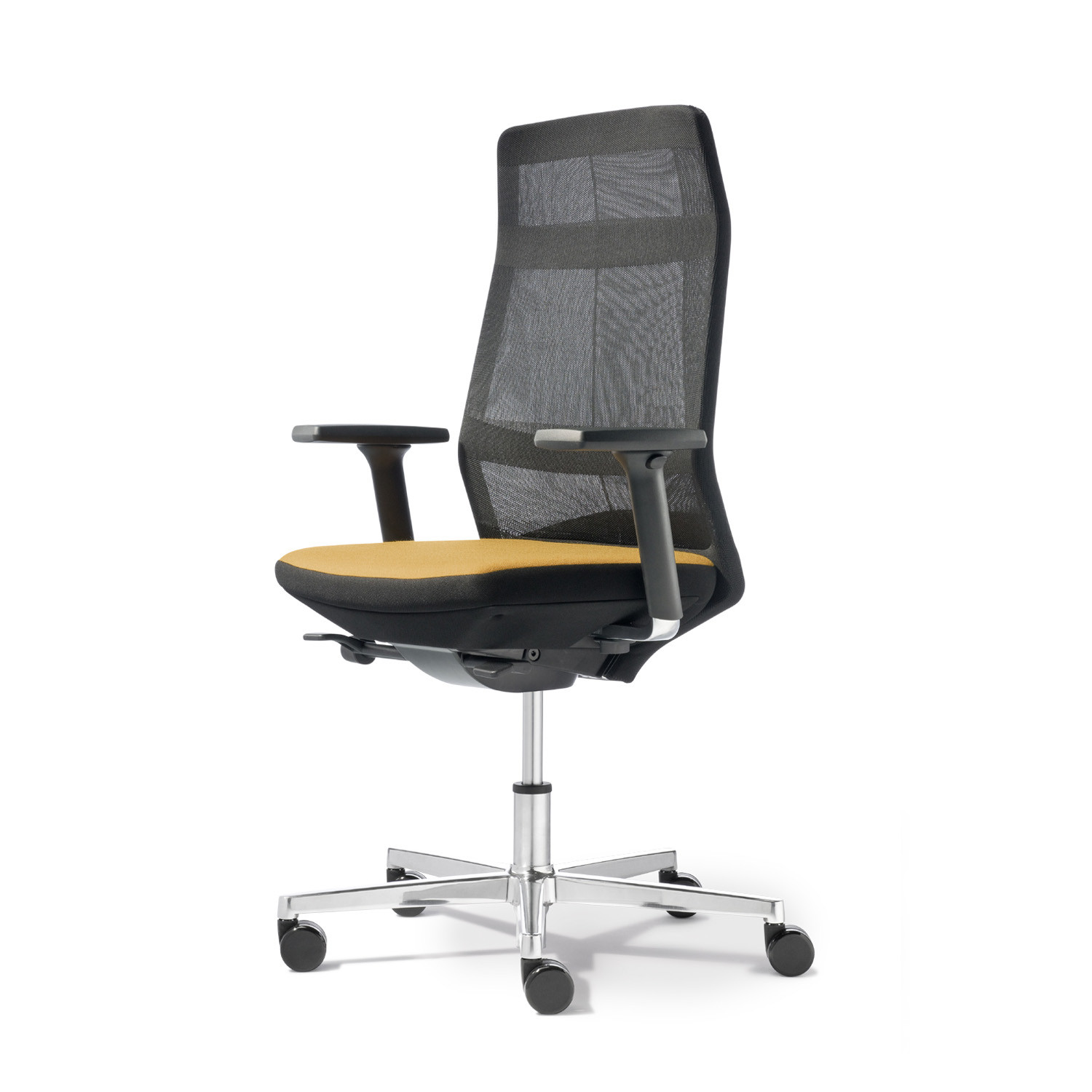 Ayo Office Chairs