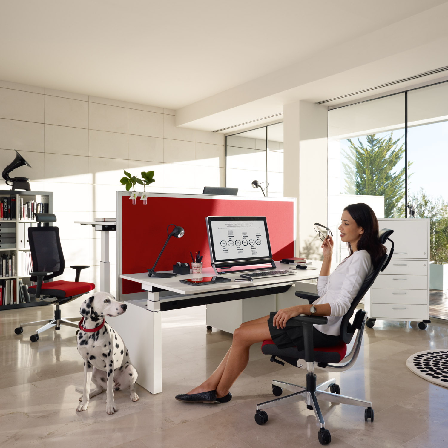 Black Dot Net Executive Chair from Sedus