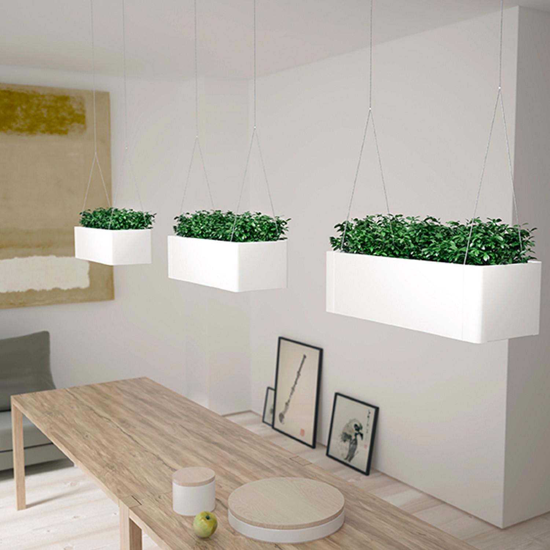 Green Light Suspended Plant Pots