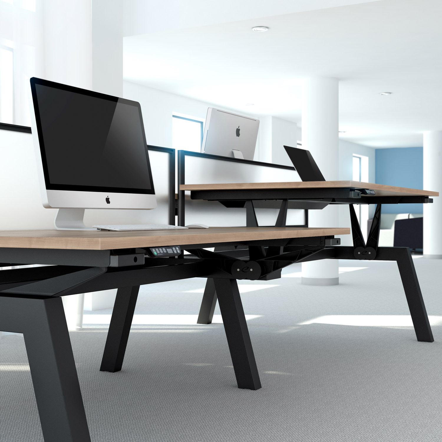 Linnea Elevate Electric Adjustable Bench Desks