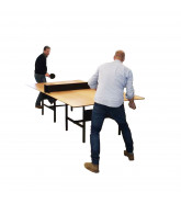 DAN Ping Pong Meeting Table