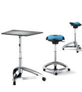 Dolphin Standing Seat and Table