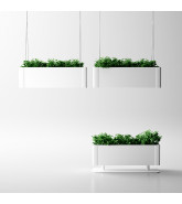 Green Light Plant Pots