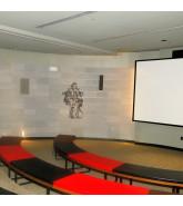 Linear Wall Panels