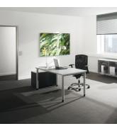 SympASS Office Desk