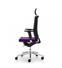 Blue Ergonomic Task Chair