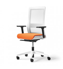 Poi Office Chair with white frame