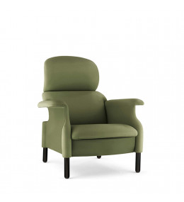Sanluca Armchair Green