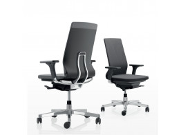 Pyla Ergonomic Tech Chairs