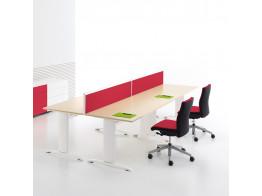 Zebra Desk System