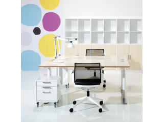 X12 Adjustable Desk