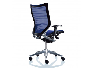 CP Task Chairs