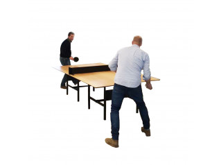 DAN Ping Pong Table