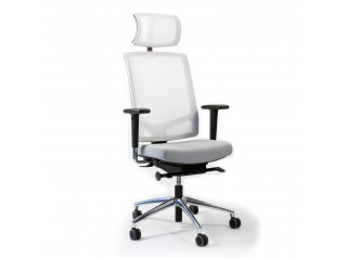 Faveo Task Chair