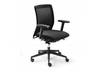 Paro Plus Office Chairs