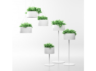 Green Cloud Plant Pots