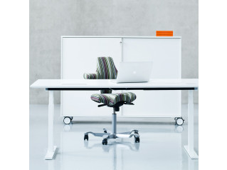 Q20 Height Adjustable Desk
