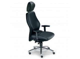 Shape Executive Chairs