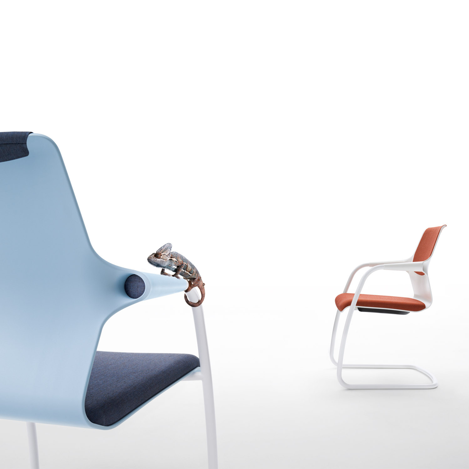 Allright Cantilever Chairs