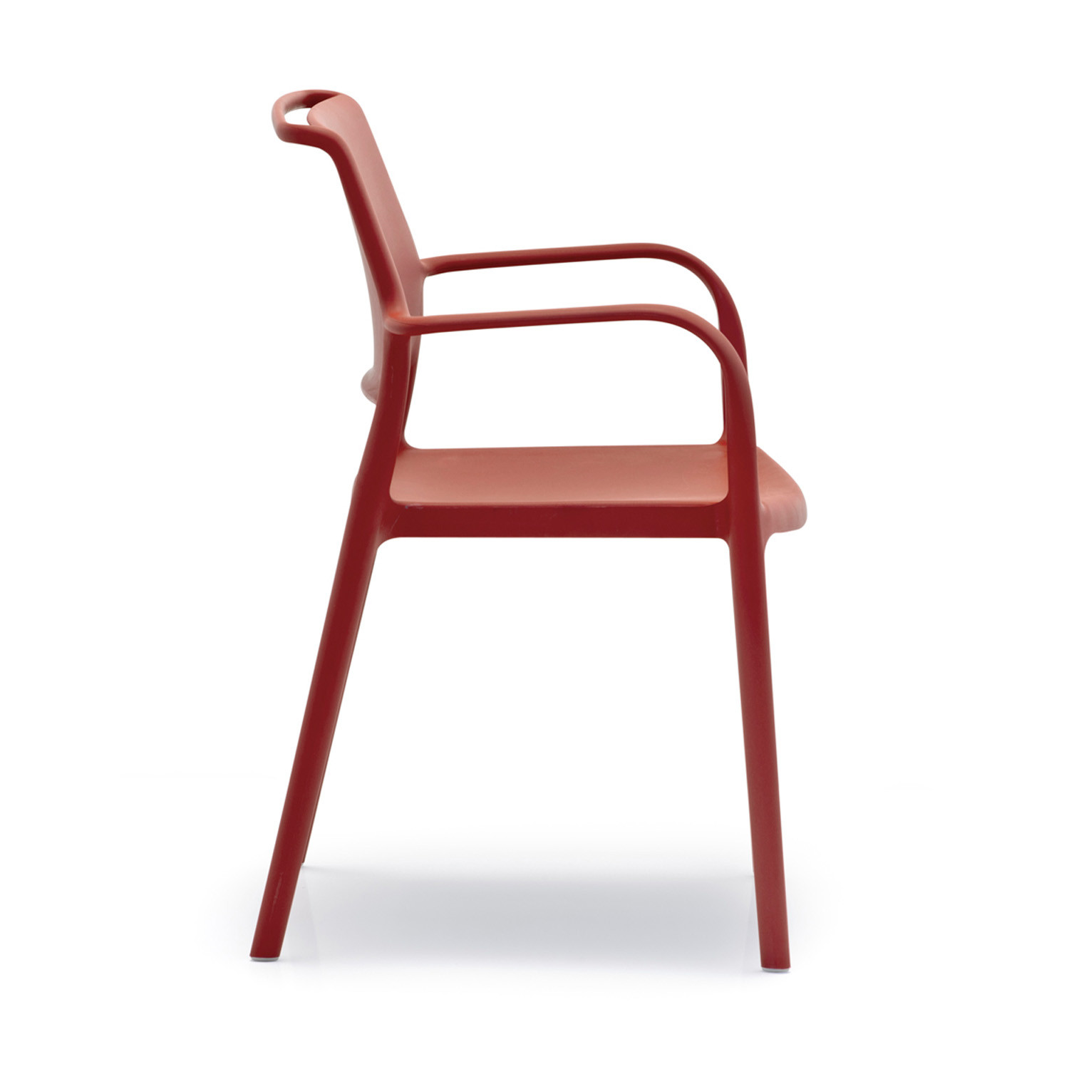Ara Dining Chairs
