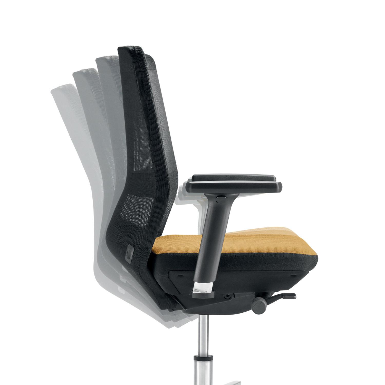 Ayo Chair Back Adjustable
