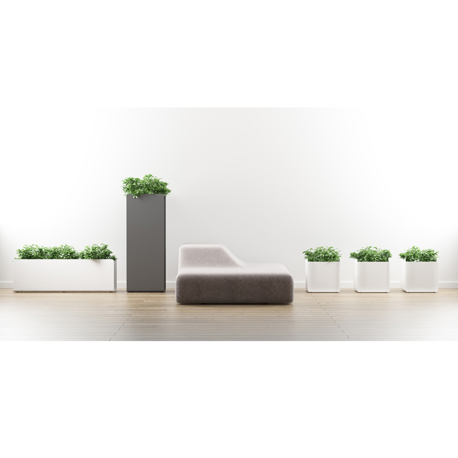 Systemtronic Crepe Planters