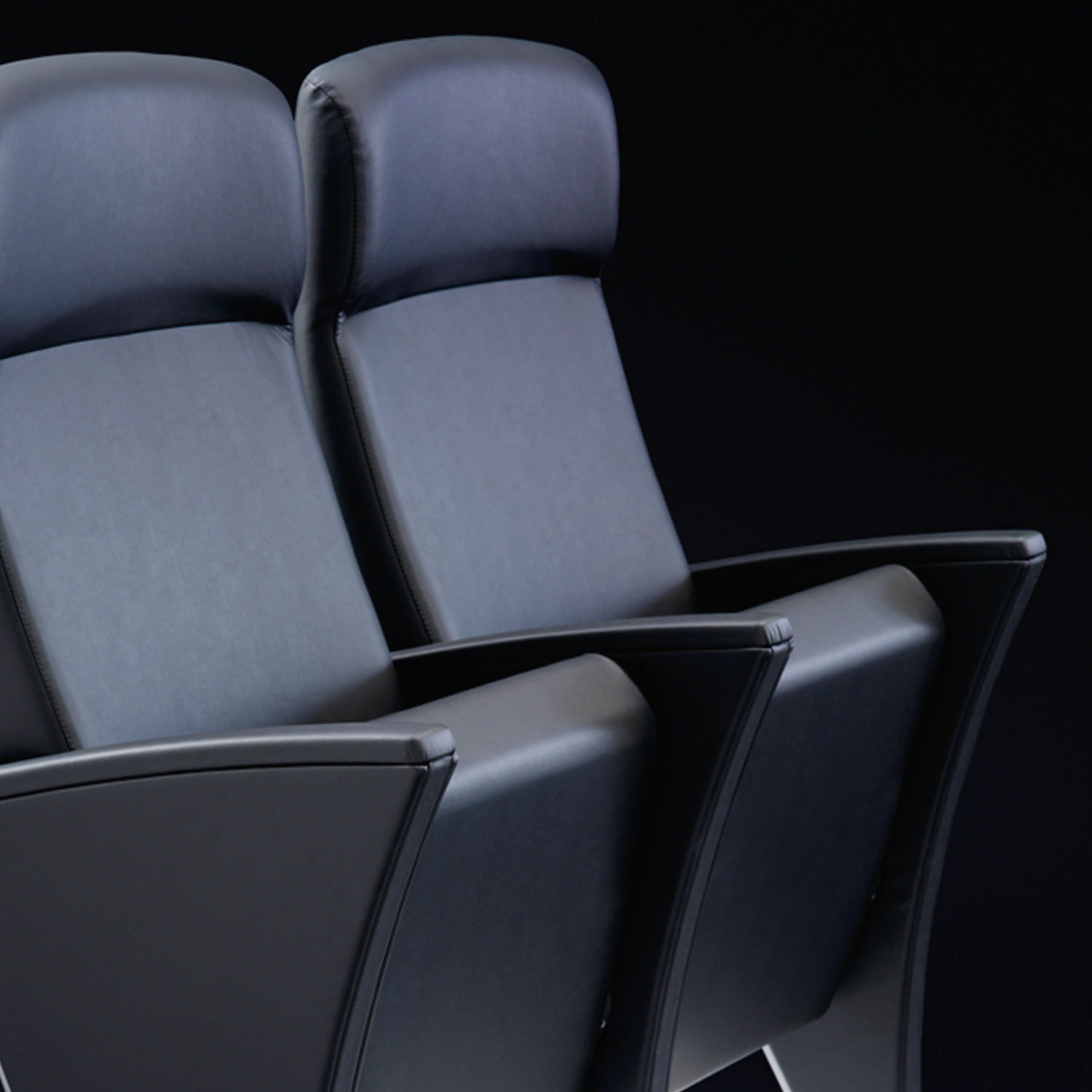 Eidos Auditorium Chairs upholstered in leather
