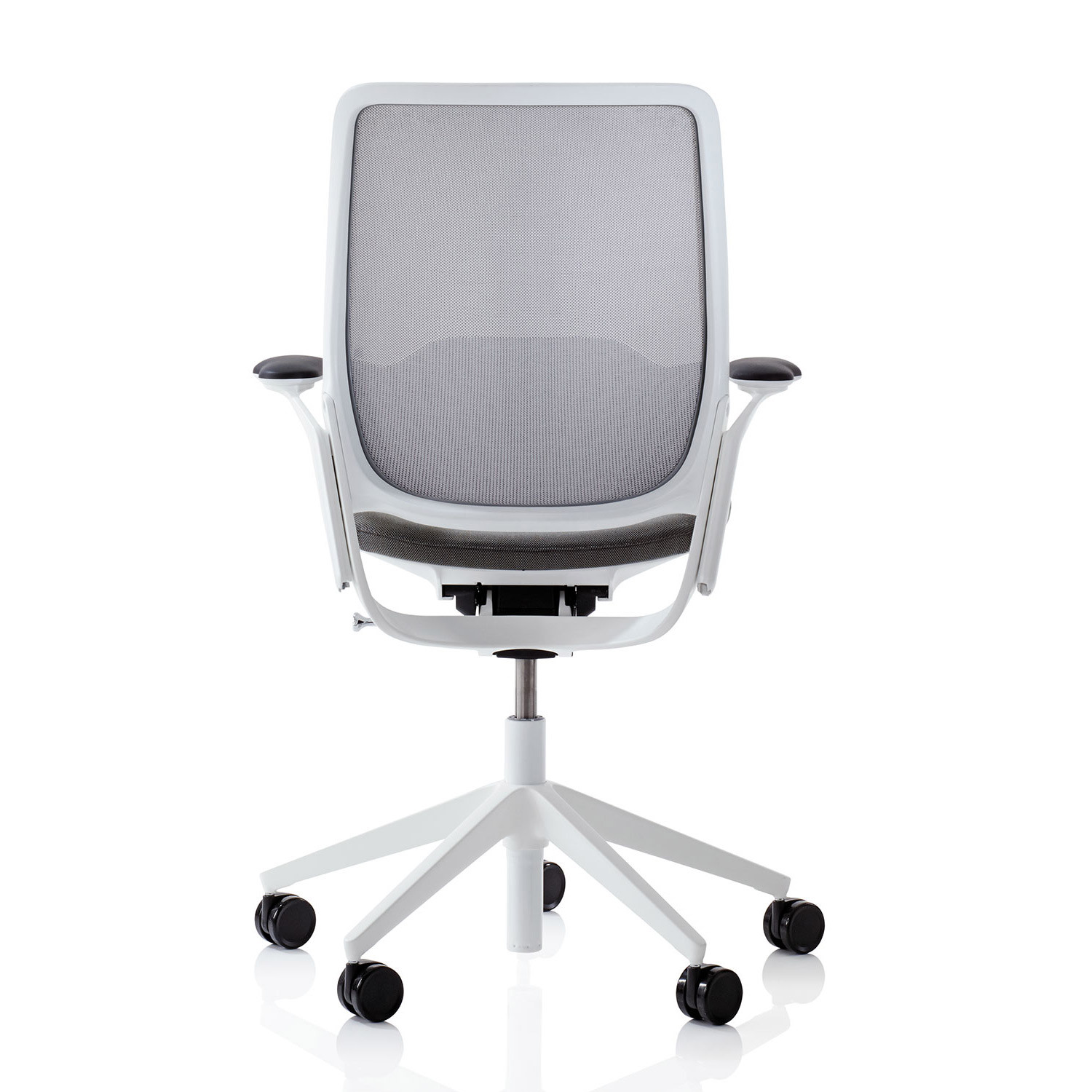 Eva Mesh Task Chair Back View