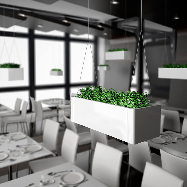 Green Light Plant Pots