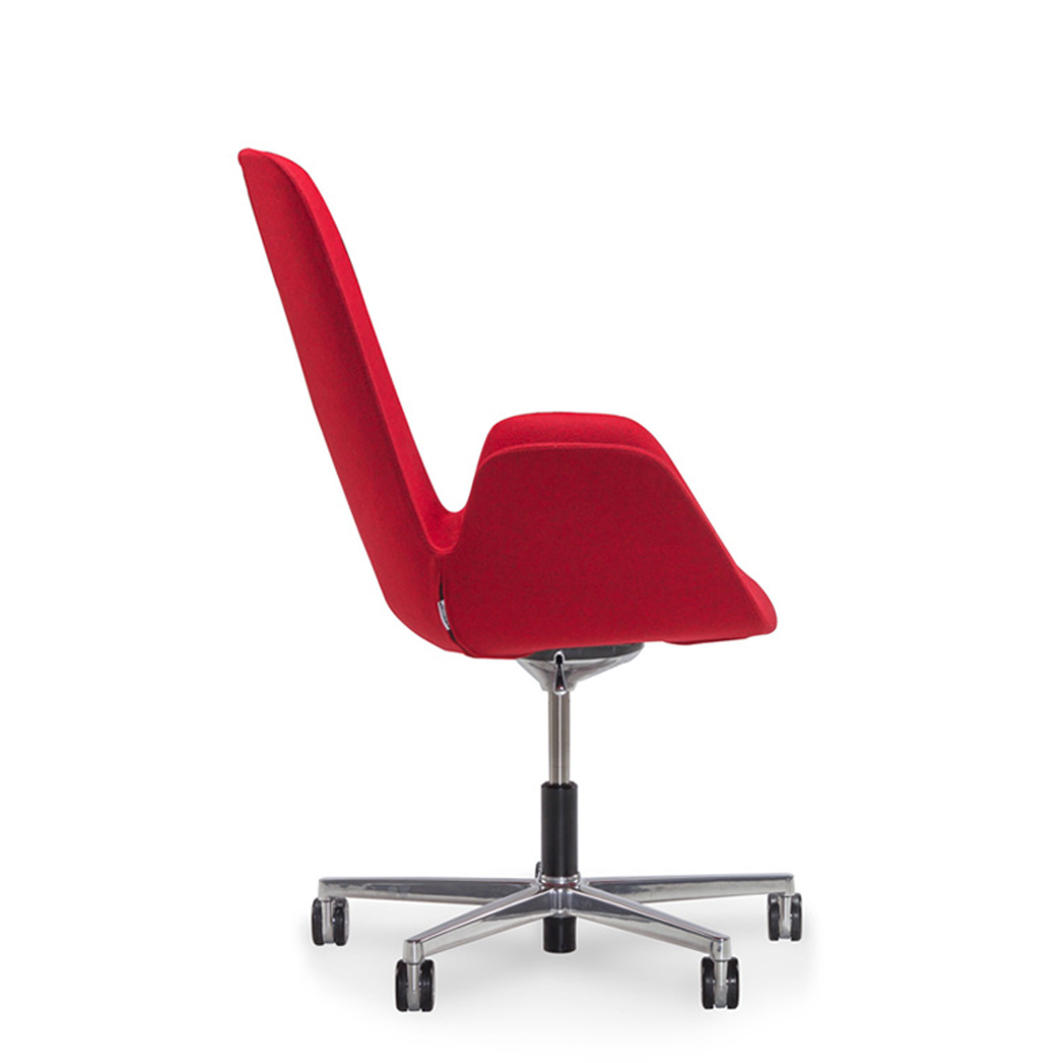 Halia Conference Chair