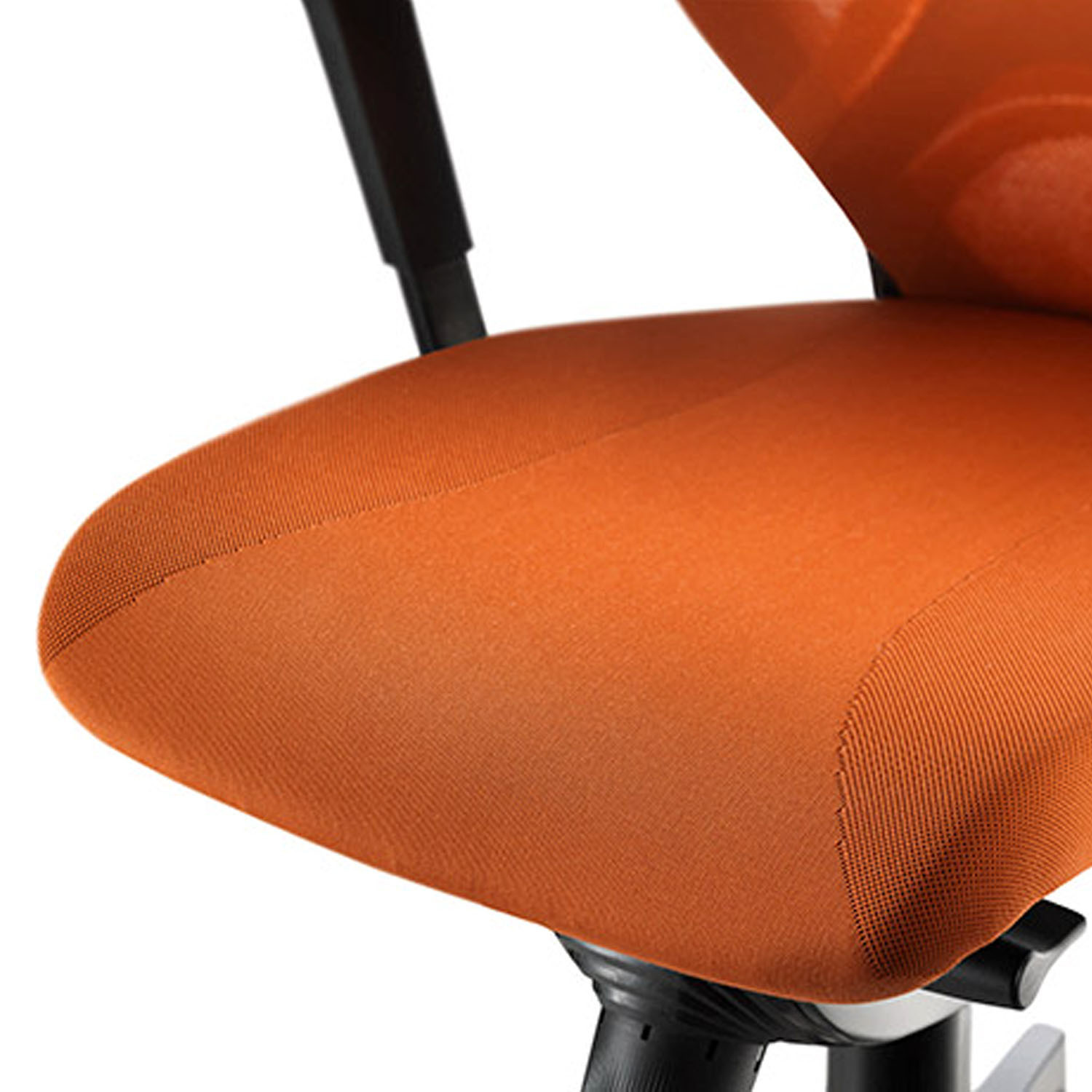 In 3D Ergonomic Task Chair