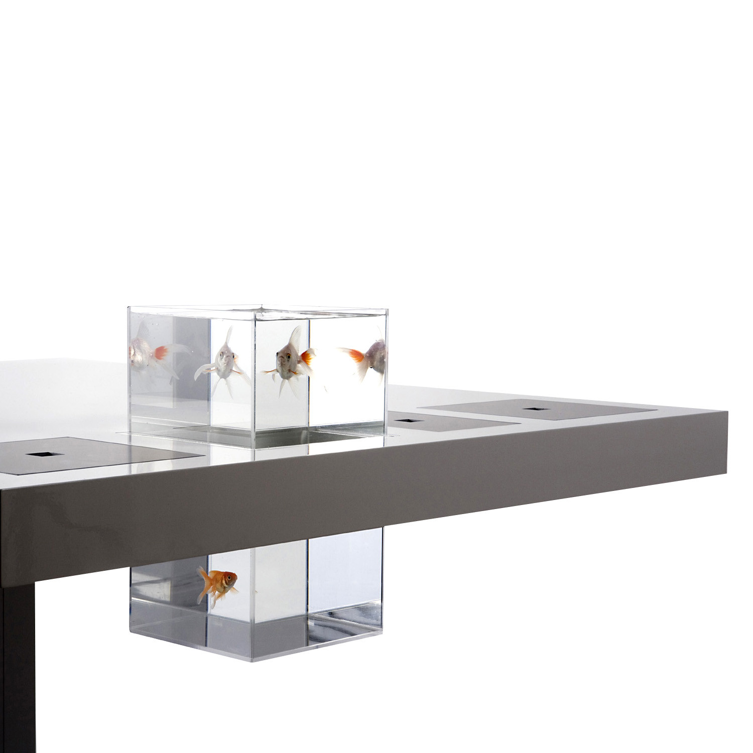 Holmris Milk Desk Fish Tank