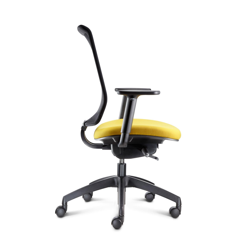 My Mesh Back Ergonomic Task Chair