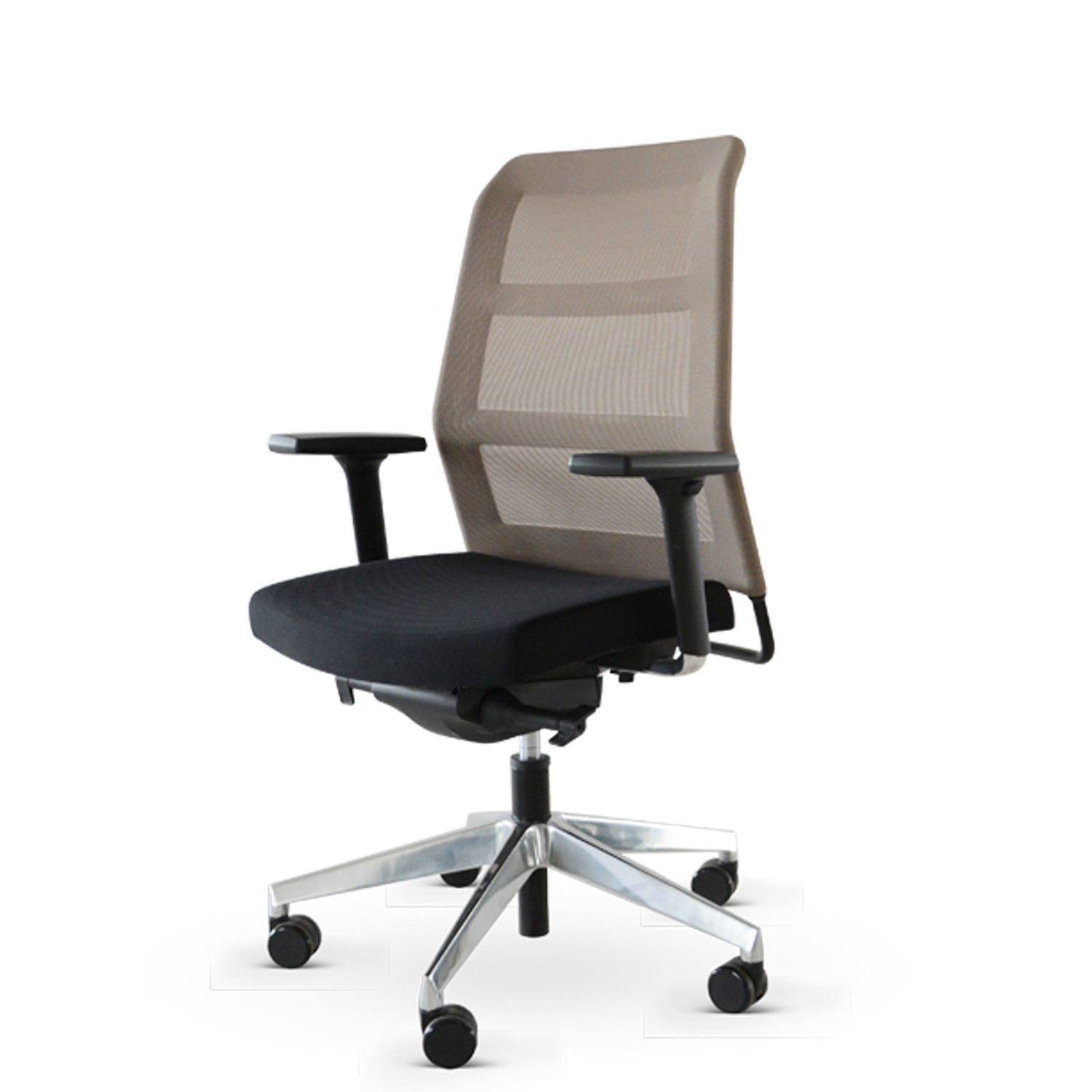 Paro_2  Swivel Chair with Grey Mesh