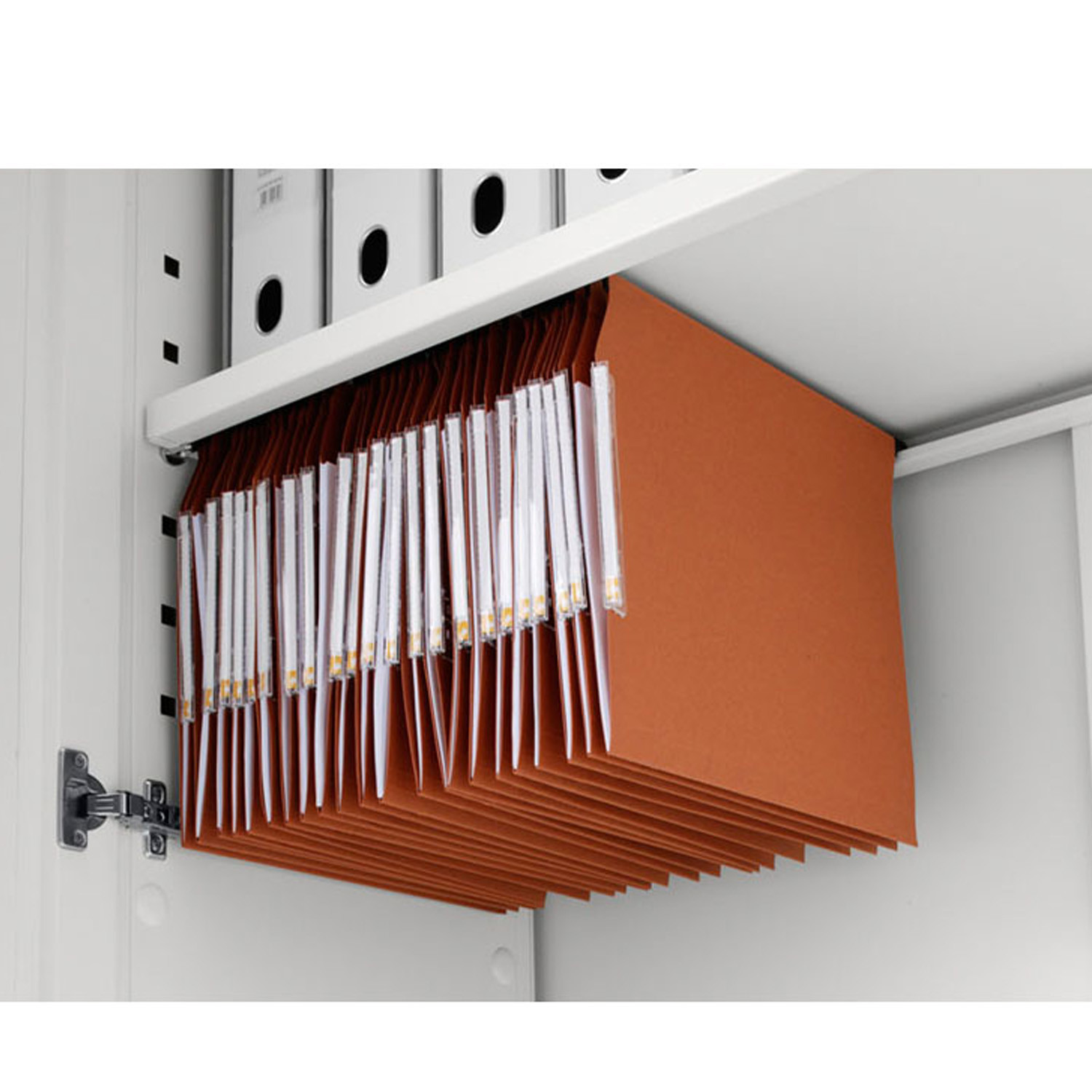 Primo Acoustic Cabinet is equipped with shelves to hold hanging files