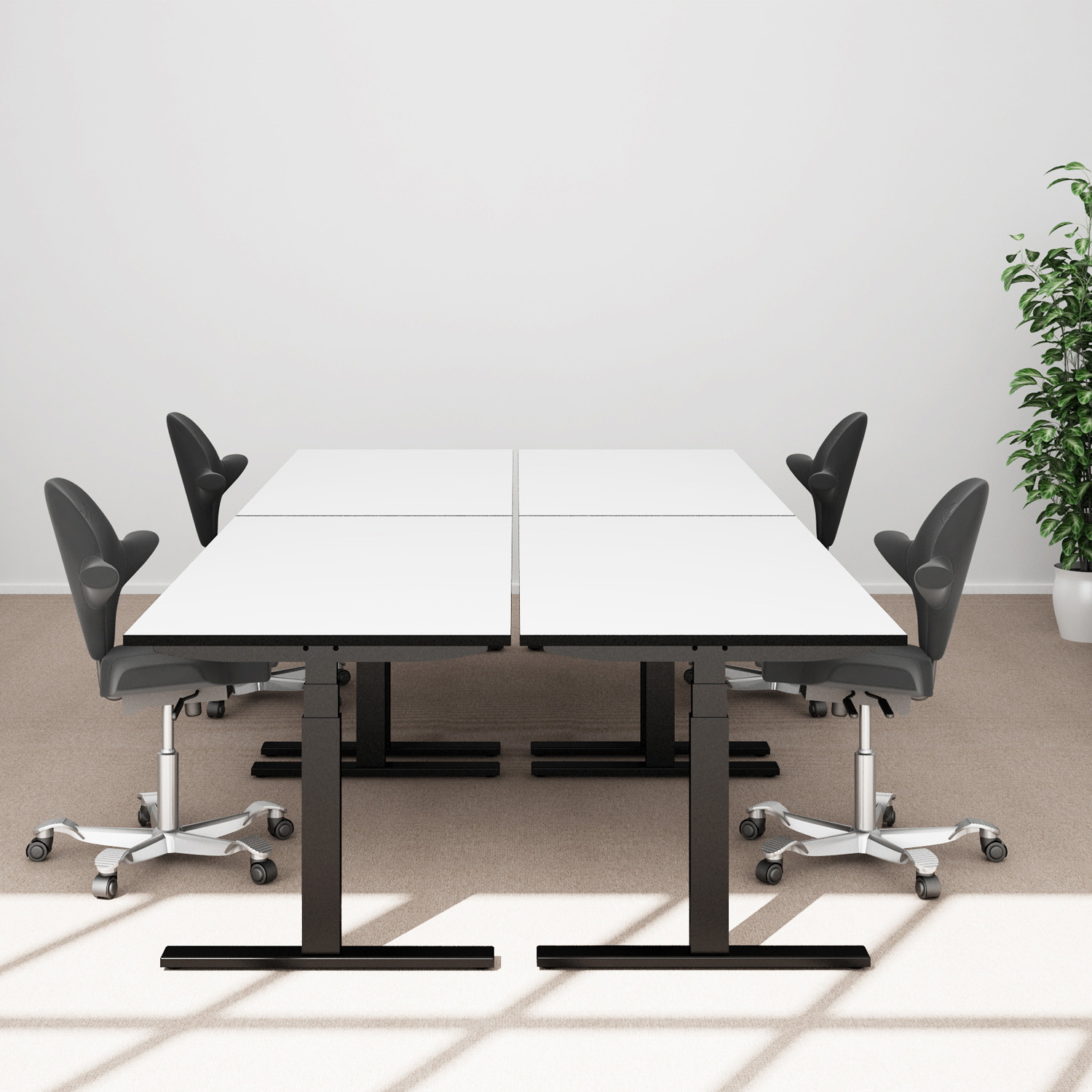 Q20 Adjustable Office Desks