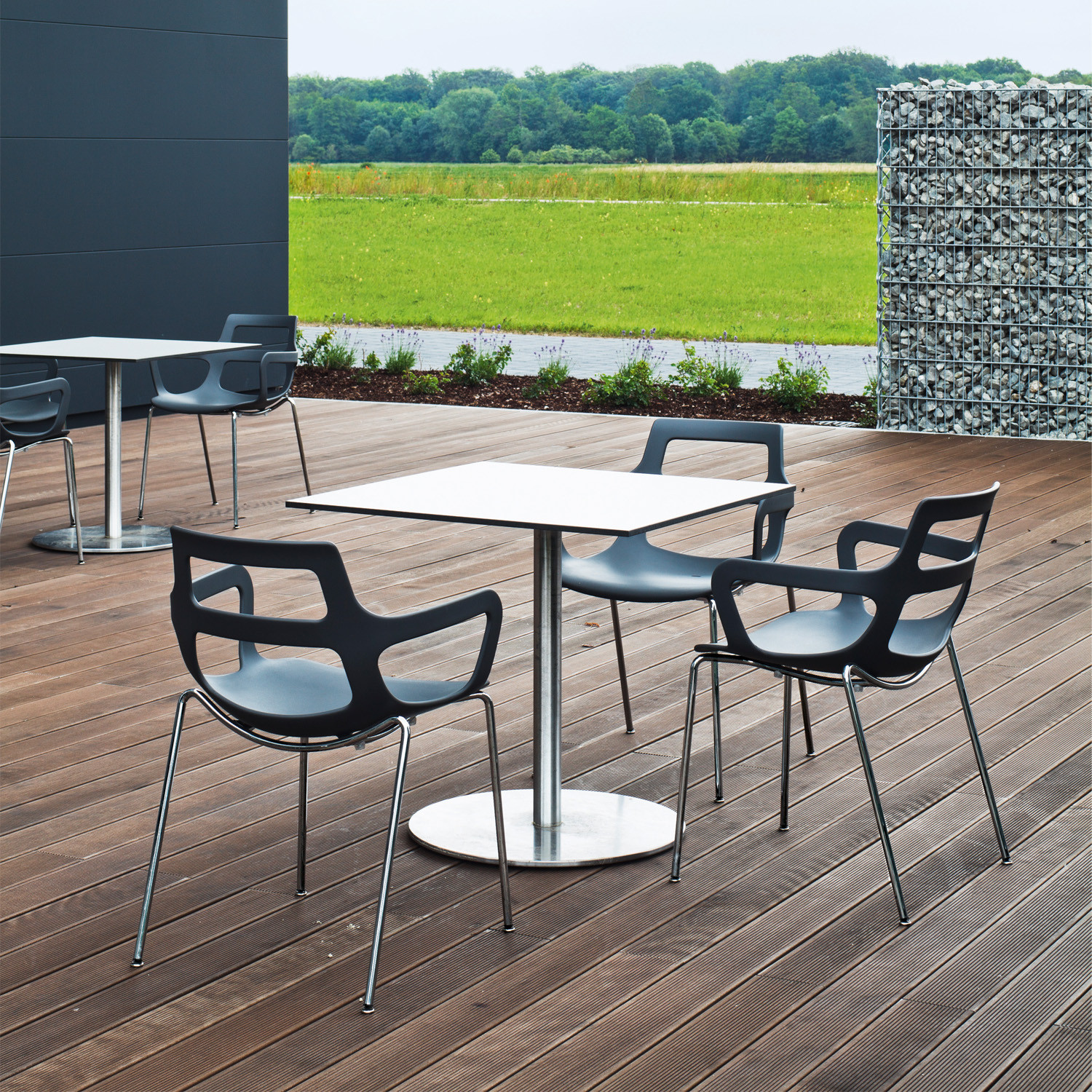 Salsa Chairs by Brunner