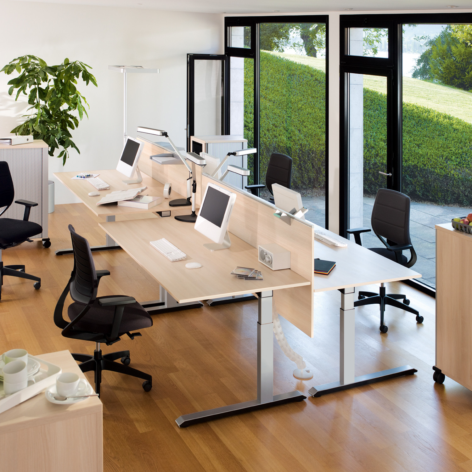 Temptation C Height Adjustable Desks + Desk Screens