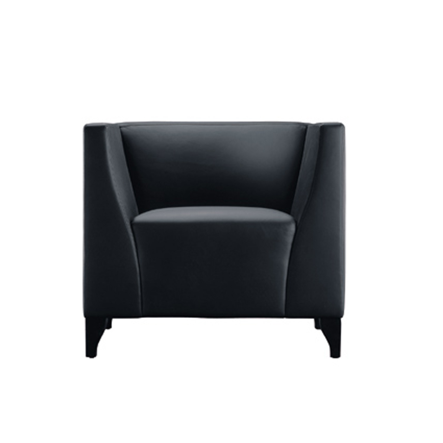 Theba Leather Armchair Chair Black