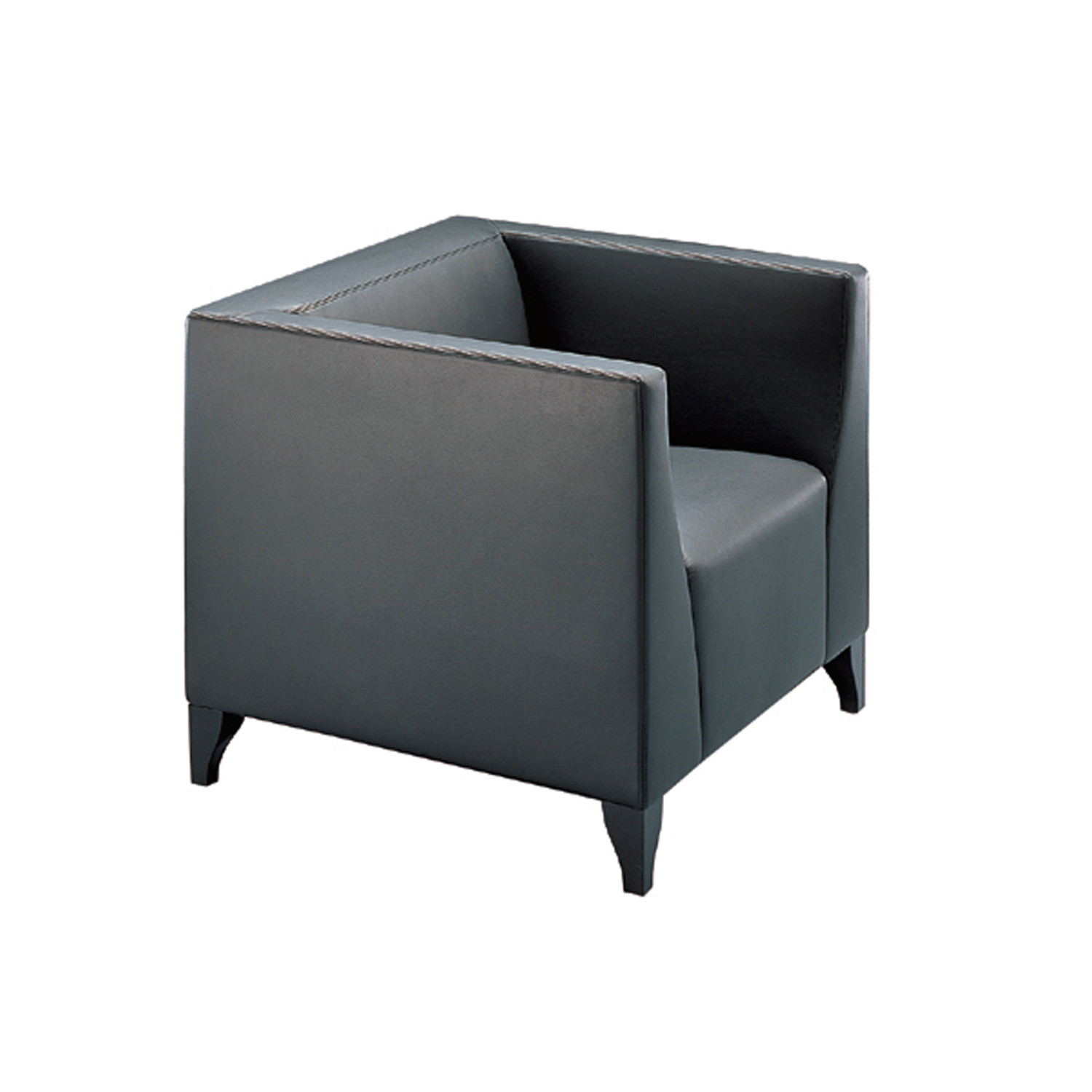 Theba Lounge Chair
