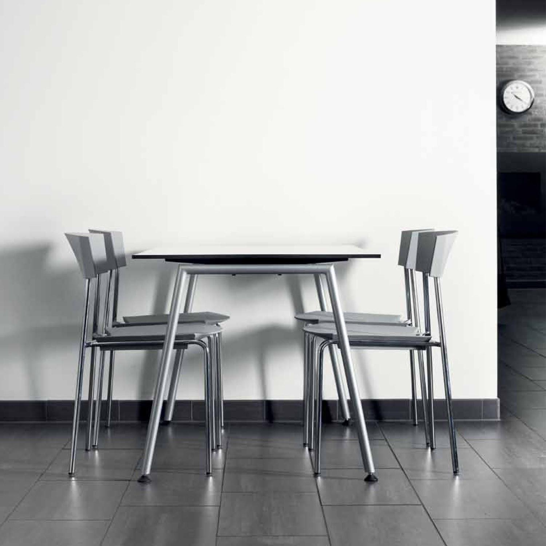 Toro Dining Chairs